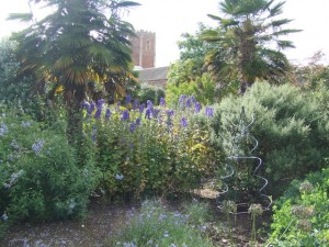 Blue Border, Walled Gardens of Cannington