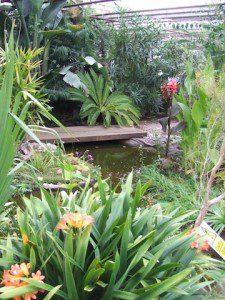 Botanical Glasshouse, Walled Gardens of Cannington