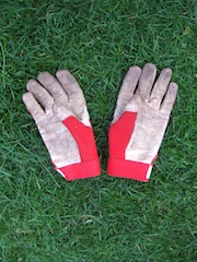 Town & Country gardening gloves