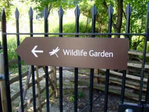 Wildlife Garden, Natural History Museum