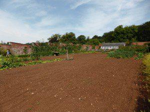 Good Somerset soil