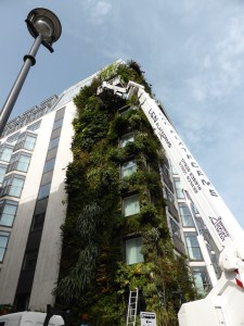 vertical garden; Athenaeum Hotel, Piccadilly, London