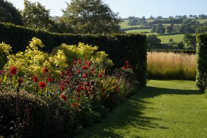 Yeo Valley Organic Garden lime and red garden with landscape beyond